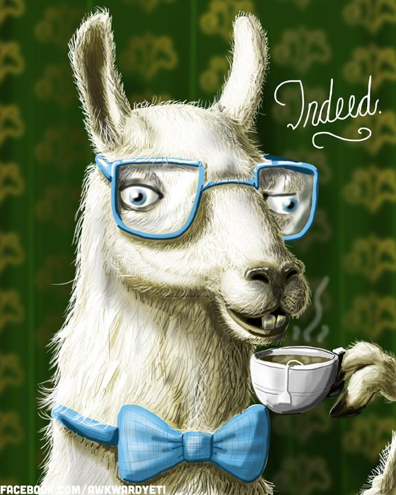 a fancy llama